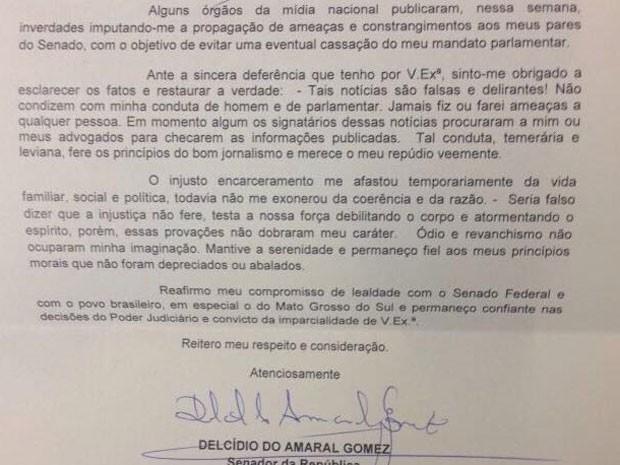 Imagem da carta de Delcidio a senadores (Foto: Reprodução)