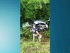 Família vela pai e bebê mortos em acidente causado por adolescente