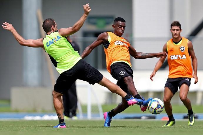 Montillo e Marcelo Botafogo (Foto: Vitor Silva / SSpress / Botafogo)