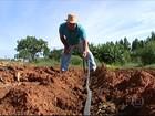 Falta de chuva causa prejuízos para os produtores de Minas Gerais