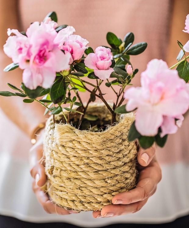 Com cola quente e corda, o vaso sem graça muda completamente: aquela mudinha querida merece o investimento! (Foto: Elisa Correa / Editora Globo)