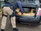 PRF prende homem que transportava mais de 500 kg de maconha no PR