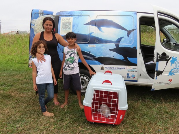 Animal foi tratado por técnicos ambientais e retornou ao mar (Foto: Arquivo Pessoal / Cristian Negrão)