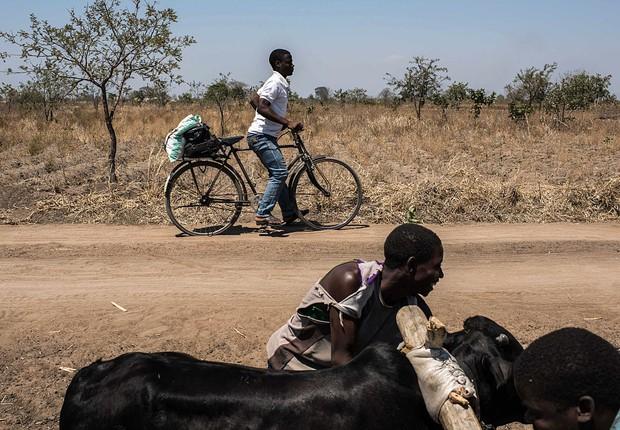 El Niño causa seca em Malawi e causa escassez de alimentos (Foto: Andrew Renneisen/Getty Images)