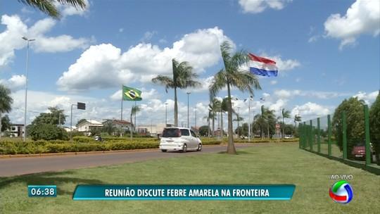 Brasil e Paraguai fazem reunião para discutir prevenção à febre amarela