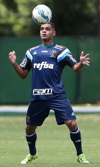 Juninho Palmeiras (Foto: Cesar Greco/Ag. Palmeiras/Divulgação )