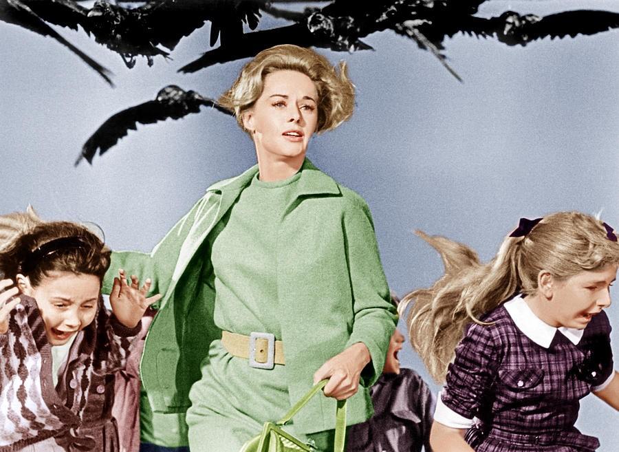 Tippi Hedren — Melanie Daniels, 'Os Pássaros' (1963) (Foto: Divulgação)
