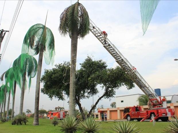 Telas foram retiradas na tarde desta terça-feira (2) (Foto: Jamile Alves/G1 AM)