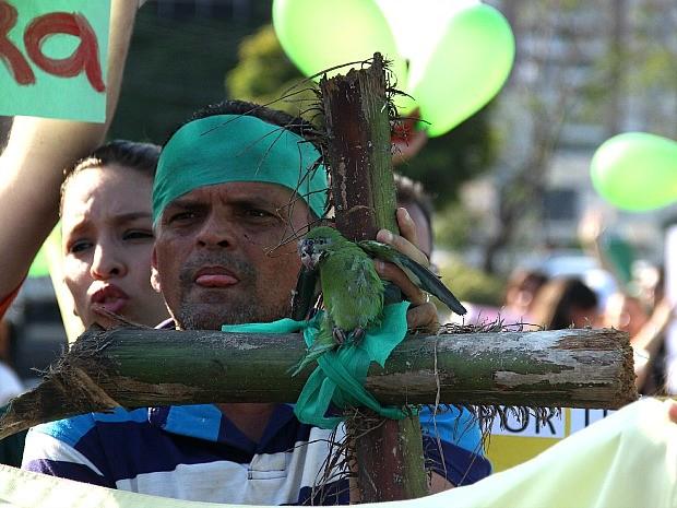 Protesto contra a morte de periquitos, em Manaus (Foto: Marcos Dantas/G1 AM)