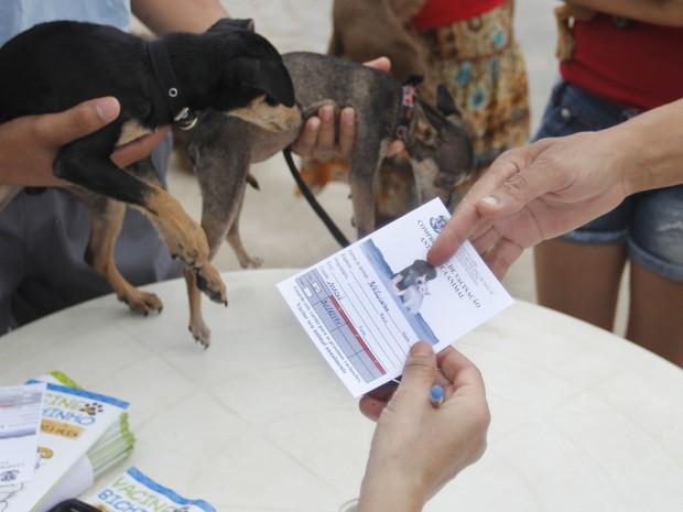 Vacinação em Macaé (Foto: Juranir Badaró/Secom Macaé)