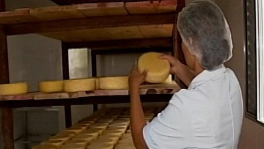 Produtores de queijo minas artesanal recebem certificado de qualidade durante visita de Pimentel a São Roque de Minas