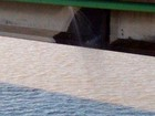Fepam coleta amostras de água para identificar alterações em Porto Alegre