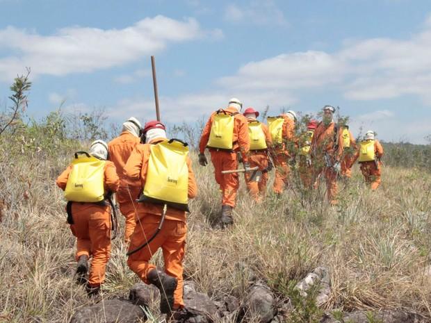 Combate ao incêndio na Chapada Diamantina, na Bahia (Foto: Cabo BM Mota/ Ten BM Vanessa/ Assessoria de Comunicação dos Bombeiros Militar)