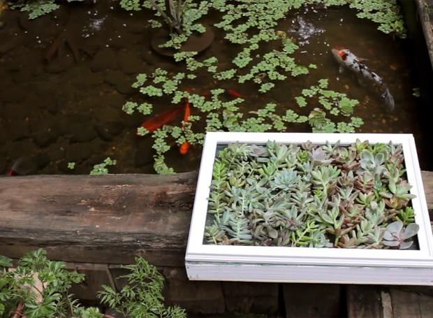 quadro-de-suculentas (Foto: Casa e Jardim)