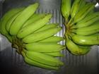 Estudantes do Amapá elaboram maionese utilizando banana verde