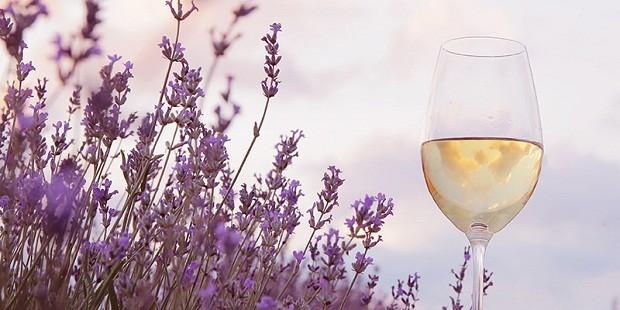 A primavera pede vinhos alegres e leves (Foto: Divulgação)