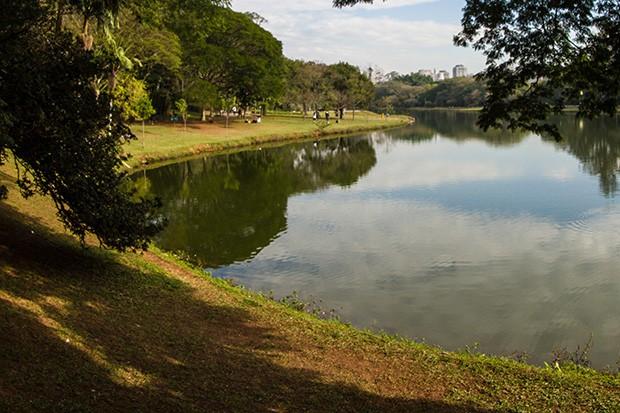 Não parece, mas isso é São paulo: vista do lago do parque do Ibirapuera (Foto: Divulgação)