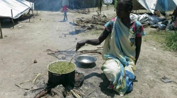 Famílias são obrigadas a comer grama e folhas de árvores para sobreviver, diante da falta de ajuda. (Foto: BBC)