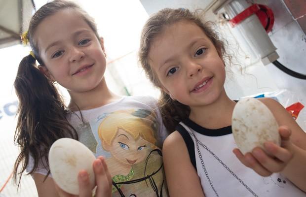 As netas de Vitor mostram ovos de ganso que vieram da fazenda no Sul de MG (Foto: Érico Andrade/G1)