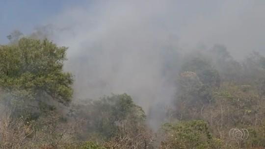 Incêndio atinge quase 100 hectares do Morro do Frota, em Pirenópolis