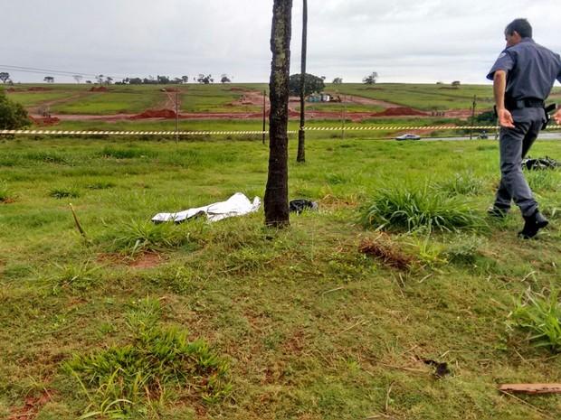 Coqueiro em que o motociclista bateu no acidente (Foto: TEM Você)