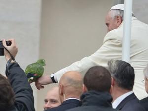 O Papa Francisco abençoa papagaio de fiel durante sua audiência nesta quarta-feira (29) na Praça de São Pedro, no Vaticano (Foto: Alberto Pizzoli/AFP)