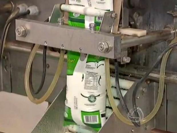 Cresce em 4,23% a aquisição de leite pelas indústrias de MS em 2014 (Foto: Reprodução/TV Morena)