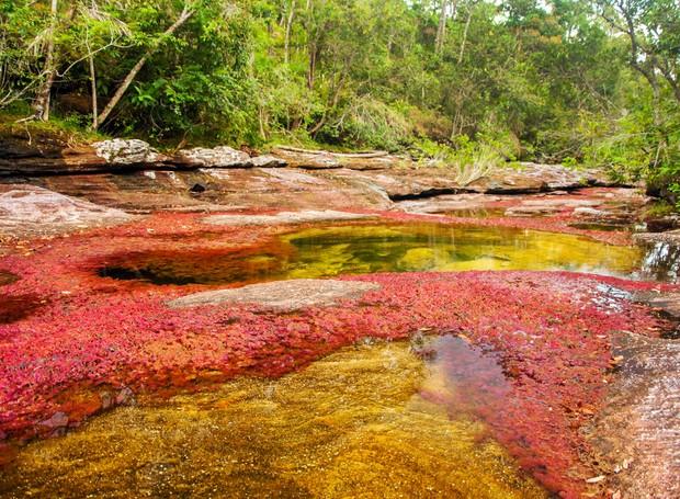 6-lugares-coloridos-cano-cristales-colombia (Foto: Thinkstock)