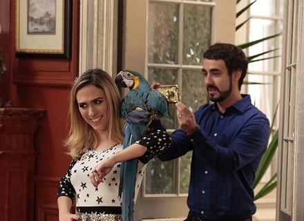 Fedora grava vídeo com cobra e arara para provocar Estelinha