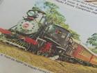 Prefeitura assume linha férrea para volta de trem turístico em Poços, MG