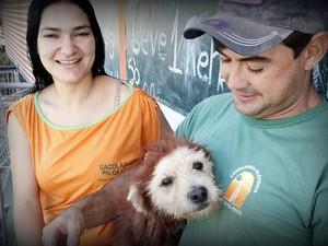 Cachorro Leão virou atração nas ruas do bairro São Carlos 8 onde vive (Foto: Fabio Rodrigues/G1)