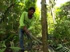 Lista negra denuncia municípios campeões de desmatamento no país