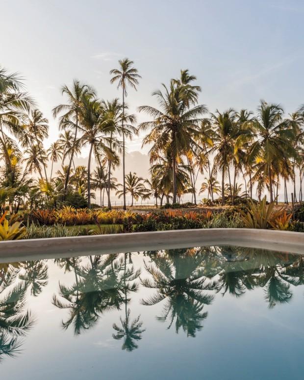 Pano de fundo. Ao entardecer, os coqueiros criam um belo reflexo na piscina. Rente à margem, Laura optou por uma composição de bromélias (Foto: Victor Affaro / Editora Globo)