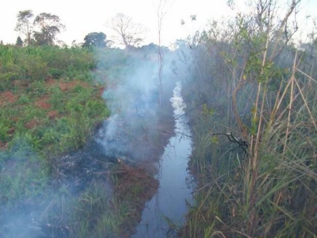 Produtor foi multado em R$ 5 mil e vai responder por crime ambiental (Foto: Divulgação/PMA)