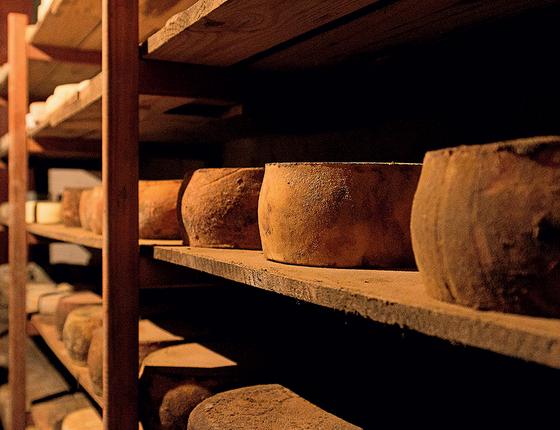 PREMIADO Maturação de queijo da Fazenda Atalaia. O ambiente ajuda no sabor (Foto: Divulgação)