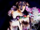Cachorros de canil ganham 'book' para incentivar adoção em Cabo Frio