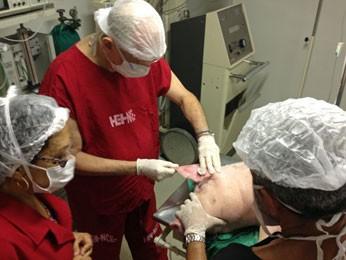 Equipe realizando a implantação do biopolímero nas tetas de uma porca (Foto: Ivo Salgado / Acervo Pessoal)