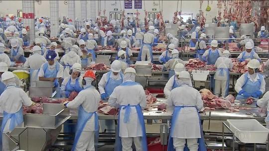 Após EUA barrar carne, ministério vai avaliar vacina contra aftosa
