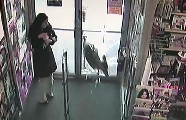 Mulher se assusta ao ver animal quebrar porta de vidro de loja (Foto: Reprodução)