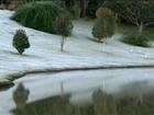 Temperaturas ficam abaixo de 0ºC em municípios da região de Itapetininga