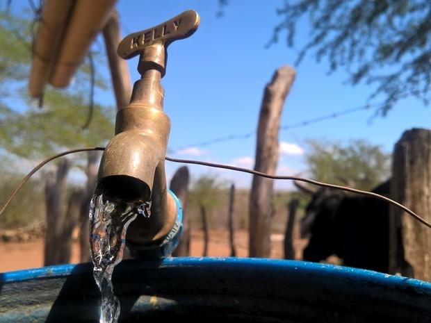 No sítio de José Pedro e Maria do Socorro, em Serra Branca, um encanamento foi improvisado pelos agricultores para receber a água de um rio próximo (Foto: Diogo Almeida/G1)