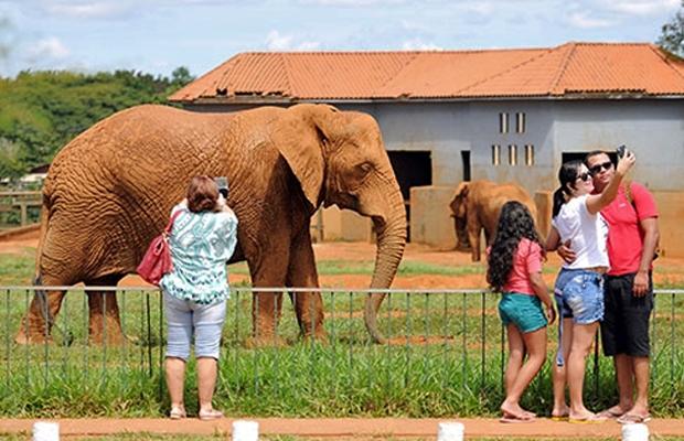 Visitantes no Zoológico de Brasília (Foto: Pedro Ventura/Agência Brasília)