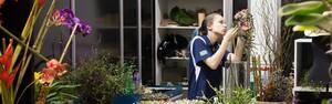 Diversidade da flora brasileira surge nas provas de florista (Paulo Amendola)