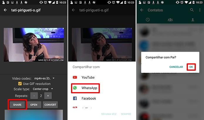 Convert GIFs para Video pode enviar imagem convertida diretamente para o WhatsApp (Foto: Reprodução/Elson de Souza)