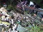 Motorista morre após tombar caminhão carregado de leite na Serra