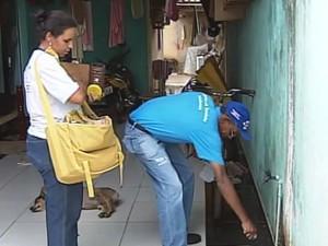 Dengue Paracatu (Foto: Reprodução/ TV Integração)