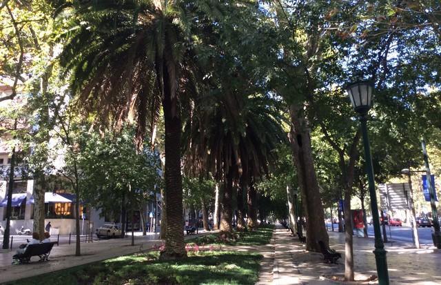 Avenida da Liberdade (Foto: Divulgação)