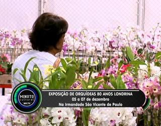 Minuto Cultural Londrina - Exposição Nacional de Orquídeas (Foto: Reprodução/RPC TV)