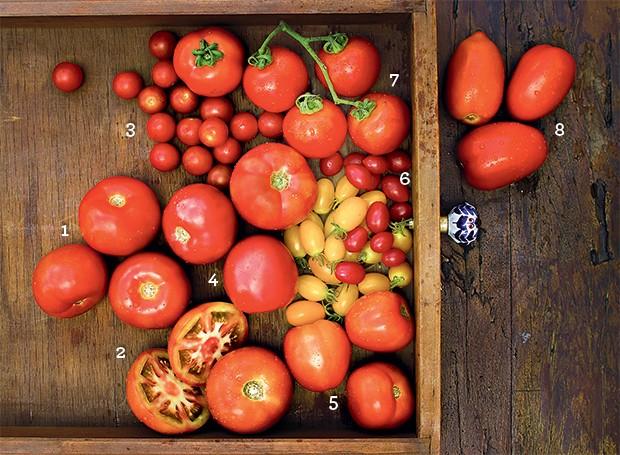 Chuva de tomates (Foto: Rogério Voltan/Editora Globo)