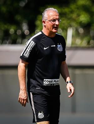Dorival Júnior Santos (Foto: Ricardo Saibun / Divulgação Santos FC)